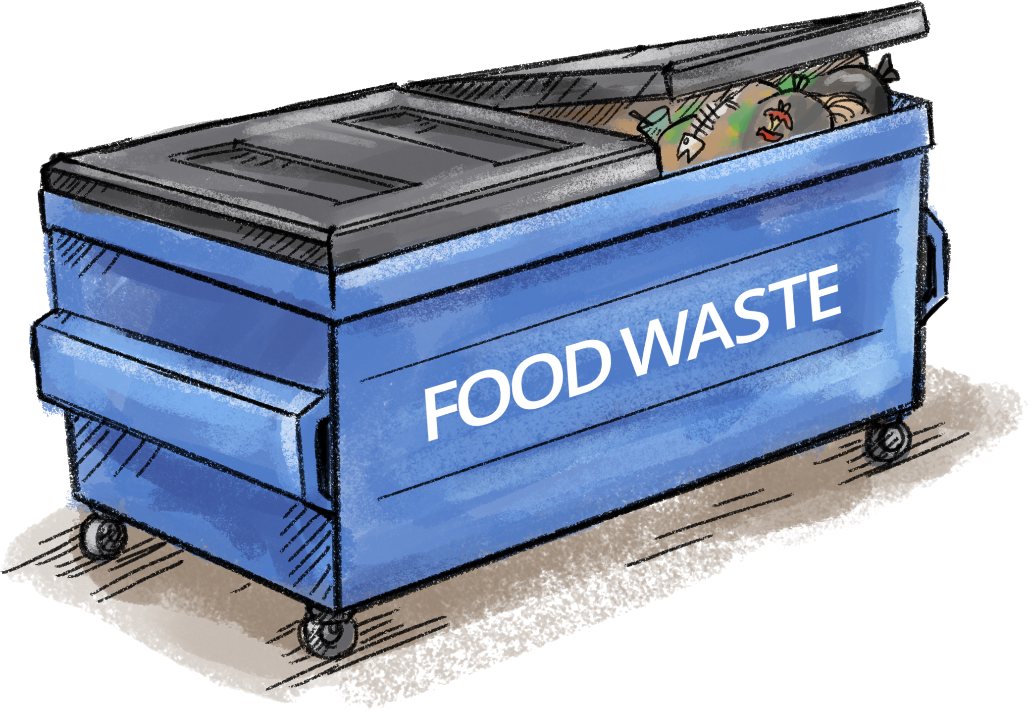 Can Food Waste Be Recycled